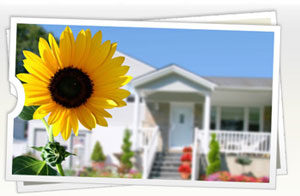 Picture of house with sunflower
