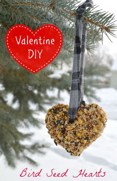 Bird Seed Heart Treat